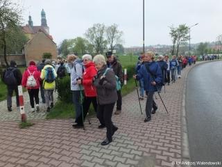 06.05.2017 r. V Marsz Nordic Walking Studentów UTW w Trzebnicy 2017