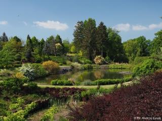 19.05.2020 r. Piękne jest alboretrum w Wojsławicach, ktore tego dnia odwiedziło kilku słuchaczy OUTW i zapraszają osoby lubiące piękno przyrody.