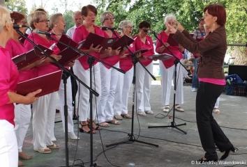 20.08.2017 r. Nad stawami miejskimi w Amfiteatrze w Oleśnicy , odbył się koncert Chóru Oleśnickiego Uniwersytetu Trzeciego .